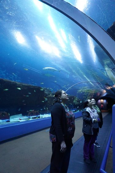 Photo showing Myra Parker (left) and Christina Oré (center) at the Georgia Aquarium